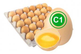 Яйцо куриное столовое 1 категория кремовое